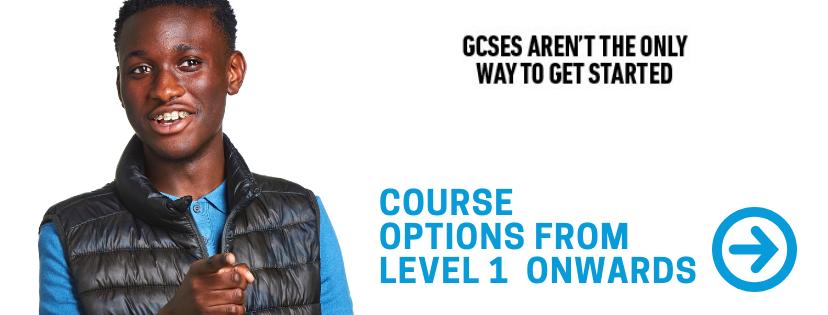GCSE Button